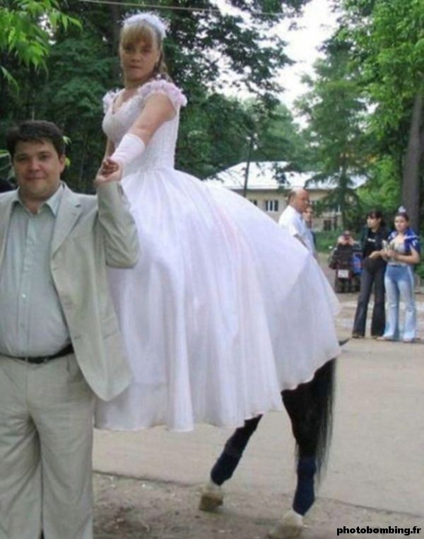 Femme centaure partie 1