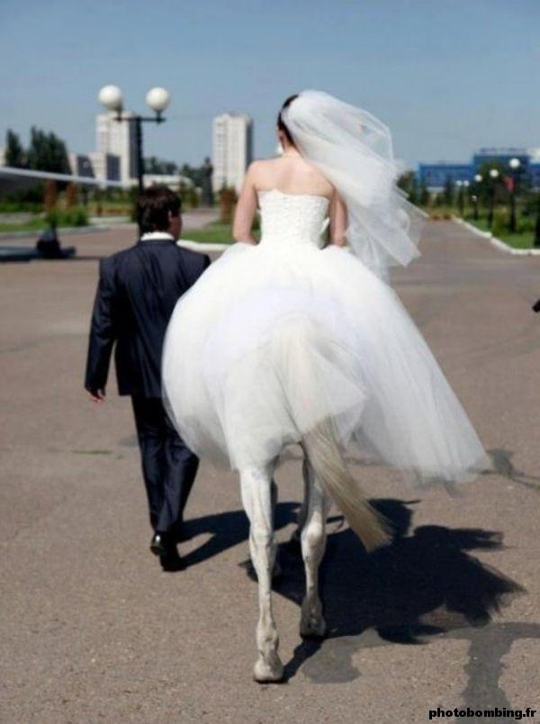 La mariée était une centaure partie 2